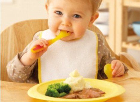 General healthy nutrition guidelines for toddlers and young children meals should start within 15 minutes and for a toddler be done within 25 minutes if not remove the food forumfinder Images