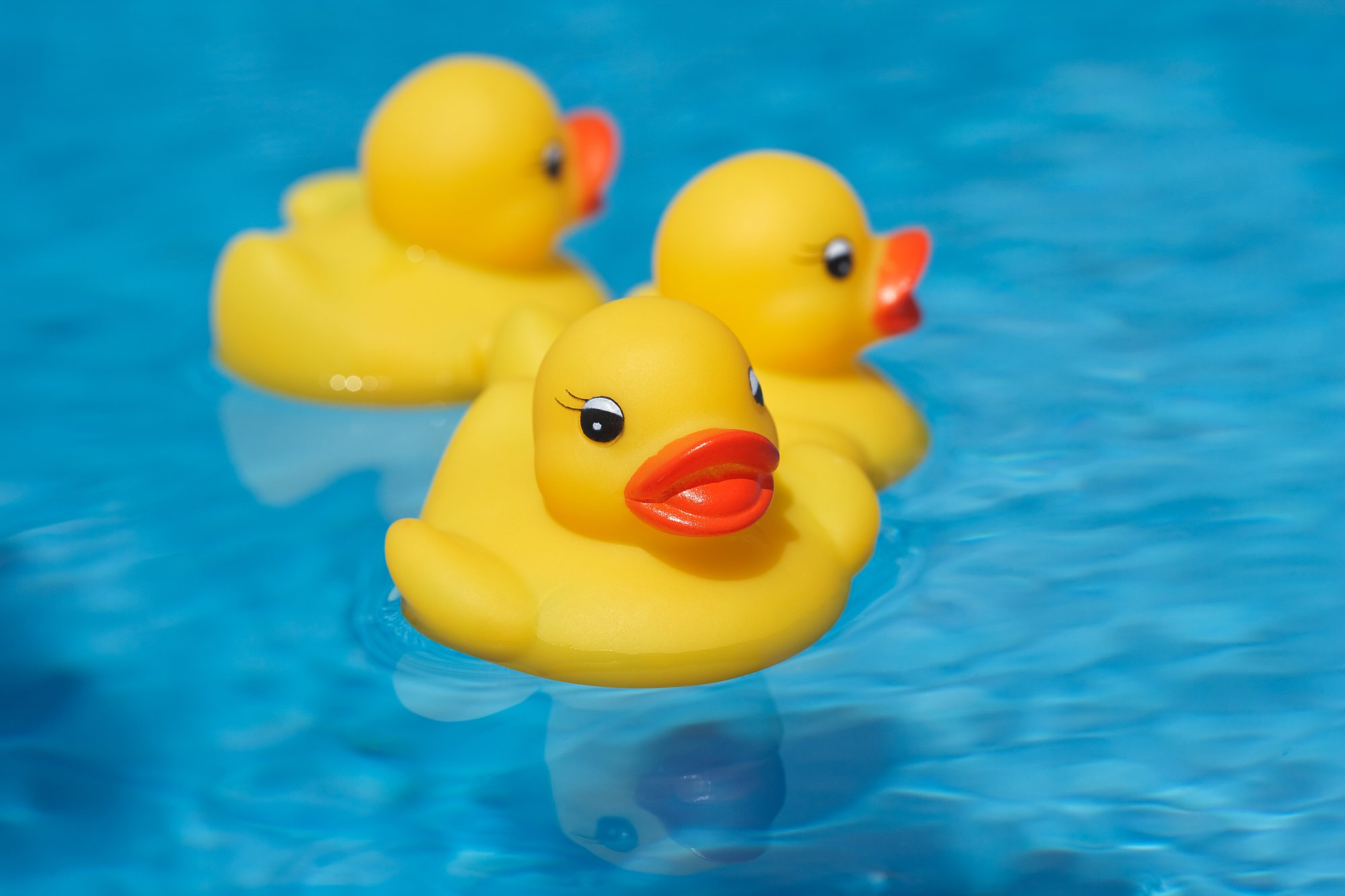 Rubber Ducky may not be the friend we thought he was ...